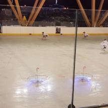 icedance_show_Samoens3